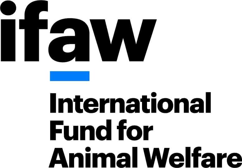 IFAW Internationaler Tierschutz-Fonds gGmbH